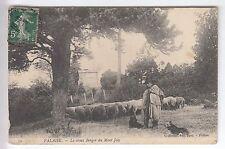 CPA FALAISE 14 -  LE VIEUX BERGER DU MONT JOLY ELEVAGE MOUTON CHIEN 1908 ~B79