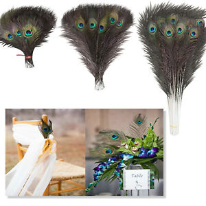 10pcs - 100pcs Peacock Tail Feathers Feather for Wedding Millinery Card Art