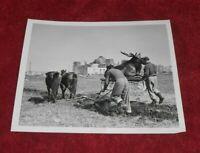 Unknown Date/Place Press Photo- Moose Statue, Antique Plow, Unknown Bldg