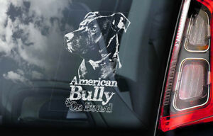 AMERICAN BULLY Car Sticker, Bull Terrier Dog Window Sign Decal Gift Pet - V02
