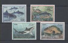 POISSON Algérie 4 val de 1985 ** FISH FISCH PESCE