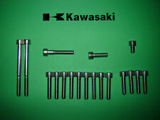 Kawasaki AR125 KE125 125ccm Motor SS Edelstahl Innensechskant Schraubensatz