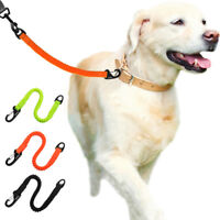 Nylon Buffer Short Dog Leash Pet Traffic Lead Leash Padded Handle 3 Colors