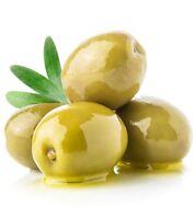 Manzanilla Spanish Olive Olea Europaea Seeds 5 PCS HIGH YIELD!