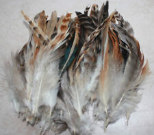 """50+ 6-8"""" Natural Red Grizzly Chinchilla Schlappen Feathers,  fly tying"""