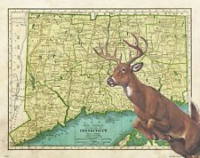 Whitetail Deer Hunting Connecticut State Map Art Print Unlimited Buck MAP38