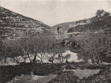 JERUSALEM. The Pool of Siloam. Israel 1895 old antique vintage print picture