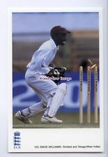 su3509 - Int.Cricketer - David Williams, Trinidad & Tobago/West Indies- postcard