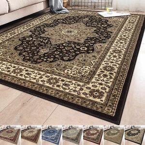 Large Traditional Area Rug Living Room Floor Rugs Carpets Oriental Style Rug