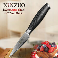 XINZUO Damascus kitchen knife 3.5 inch fruit knife paring knife homely tool