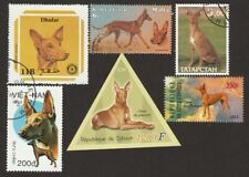 Pharaoh Hound * Int'l Dog Postage Stamp Art Collection * Unique Gift Idea *