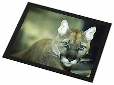 Stunning Big Cat Cougar Black Rim Glass Placemat Animal Table Gift, AT-17GP