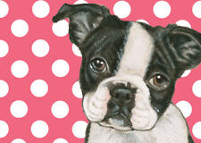 Boston Terrier Small Blank Note Cards Boxed