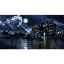 Hydor H2show Magic World Background & Application GEL 80x40cm for Aquarium