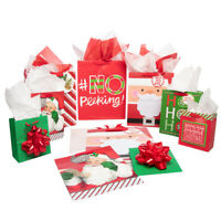10pk Hallmark Assorted Holiday Christmas Gift Bags & Tissues Presents Stockings