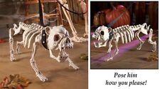 Poseable Creepy Skeleton Dog Indoor/Outdoor Halloween Decoration