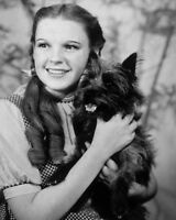 1939 THE WIZARD OF OZ 8x10 Photo Actress JUDY GARLAND Poster Dorothy Print