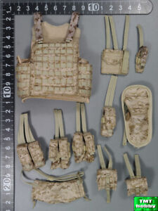 1:6 Scale ES 26030C Special Mission Frozen Night Assault - AOR Plate Carrier Set