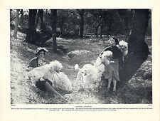 POODLE LADIES AND DOGS IN WOODLAND SETTING OLD ORIGINAL DOG PRINT FROM 1934