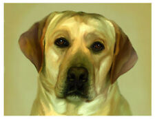 artav Yellow Labrador Lab 02 Art Print Watercolor Paper