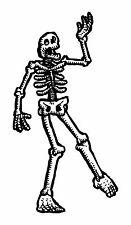 1x skeleton sticker Motorcycle Gas Tank or Car decal 4