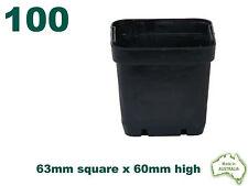 63mm Square Squat Black Plastic Pot x100