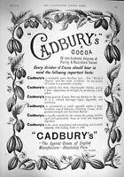 Original Old Antique Print 1894 Advertisement Cadburys Cocoa Drinking Chocolate