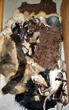 Fell Pelz stücke Echtfell Nerz Fuchs Opossum mink fur Zobel Pelzreste basteln