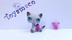 Original LPS Littlest Pet Shop Cat shorthair #391 + accessories  -Free Shipping-