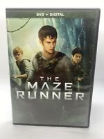 The Maze Runner (DVD, 2017) Dylan O'Brien Pre Owned Movie read description