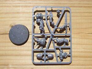 40K Space Marines Primaris Lieutenant w/ Power Sword on Sprue
