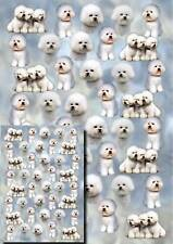 Bichon Frise Dog Gift Wrapping Paper By Starprint