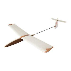 Hawk 600mm Mini - DLG