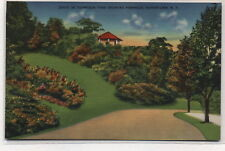 Pinnacle in Thompson Park Watertown,NY Linen Postcard