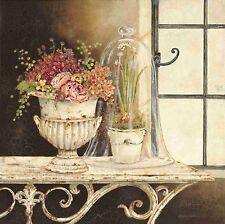 Kathryn White: Paperwhite Cloche Keilrahmen-Bild 50x50 Leinwand Stillleben