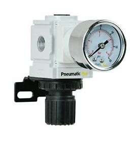 "PneumaticPlus PPR2-N02BG-4 Miniature Air Pressure Regulator 1/4"" NPT - Gauge ..."