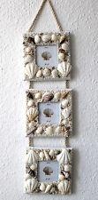3er Bilderrahmen - Set 50cm mit echten Muscheln für 3 Fotos 7x7cm