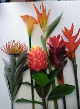 SIX Tropical Stems. Silk Flower Floral Arrangements