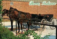 Berne Indiana, Parked Horse and Buggy, Swiss Mennonite, IN --- Animal Postcard