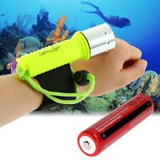 CREE XM-L T6 LED 3000LM Diving Flashlight Torch 60M Waterproof +18650 Battery FT