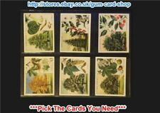 Individual/Type Cards Flowers/Garden Collectable Will's Cigarette Cards