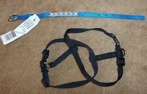"3/8"" Blue Wilson Nylon Jeweled Collar & Black Harness Fits Neck Sizes 8"" to 10"""