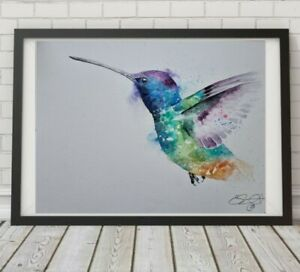 Large new Elle Smith original signed watercolour art painting of a Hummingbird