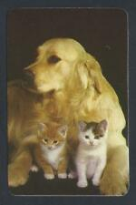 #920.553 Blank Back Swap Cards -MINT- Golden Retriever with kittens