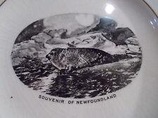 Souvenir 3 Piece Demitasse Set - NEWFOUNDLAND Seals