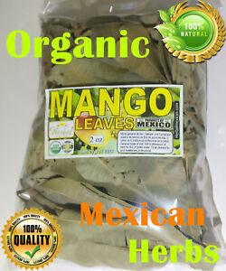 Hoja de Mango Rico en antioxidantes 2oz Mexican Mango Leaves Natural Tea !