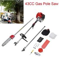 43CC 1.25kw Gas Pole Saw Pruner Chainsaw Long Reach Extension 12FT Heavy Duty