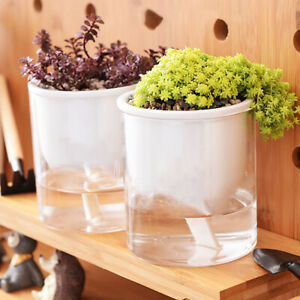 Transparent Self-Watering Plant Flower Plastic Pot Planter Home Garden Decor