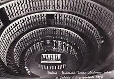 PADOVA - Università - Teatro Anatomico antico di Fabrizio d'Acquapendente 1952