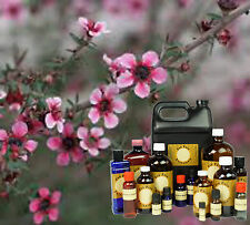 16 oz TEA TREE  ESSENTIAL OIL 100% PURE * SHIPPING DEAL AMBER GLASS BOTTLE